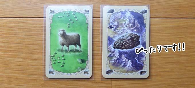 「キディトレインのスリーブ」にカタンのカードを入れた写真