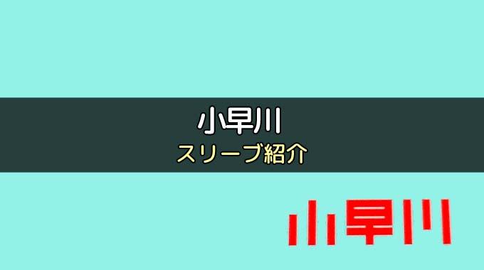 カードゲーム「小早川」にぴったりのカードスリーブを紹介