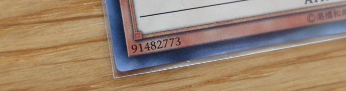 遊戯王カードにインナースリーブを付けた写真のアップ